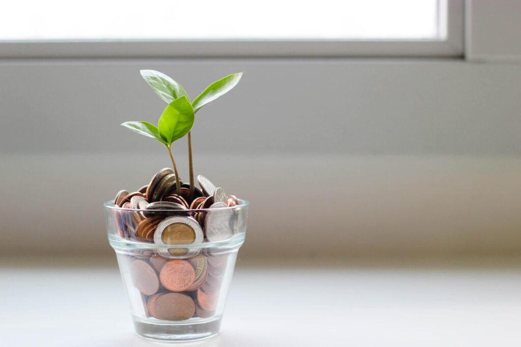 plantinha crescendo dentro de um pote de vidro cheio de moedas